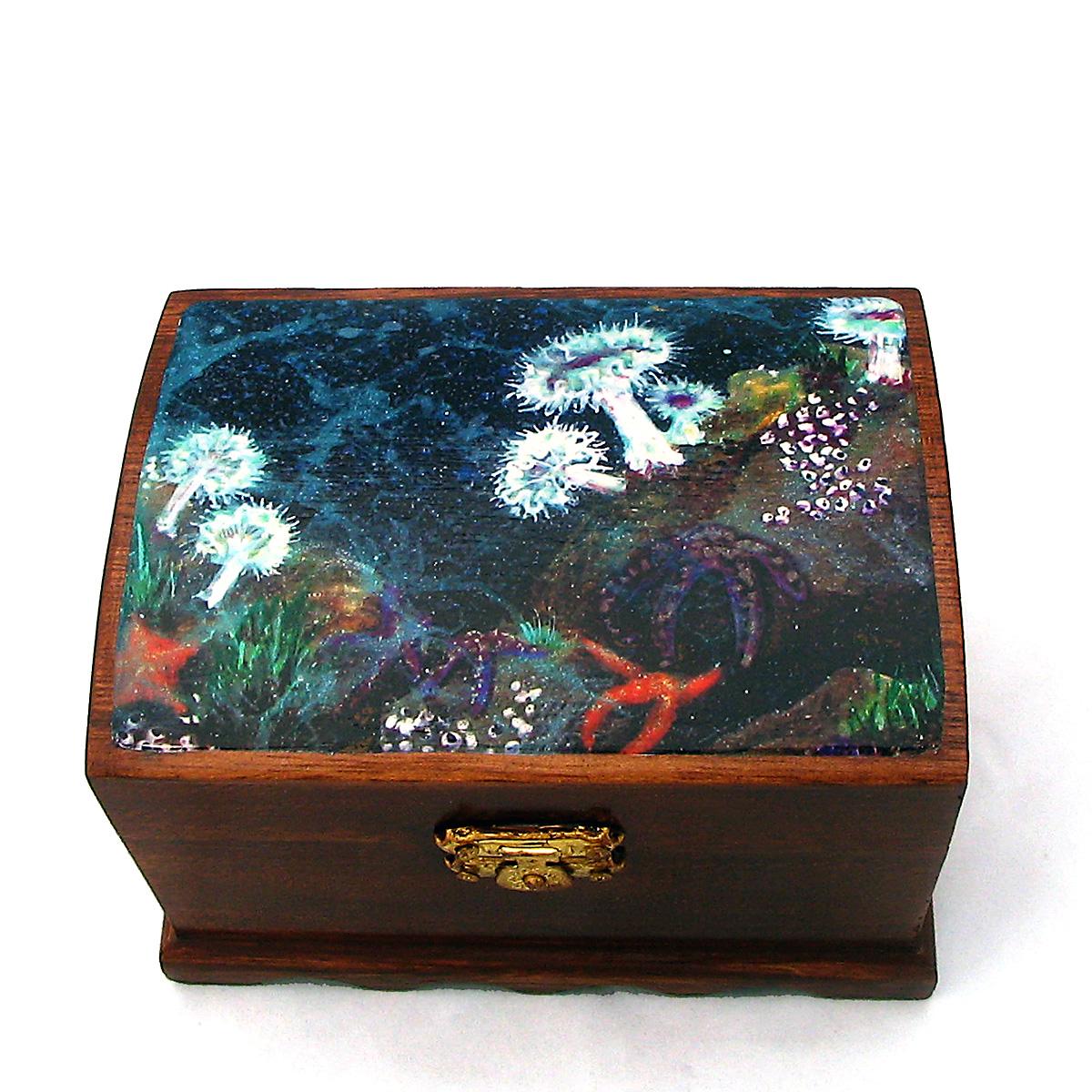 Aenemone Box